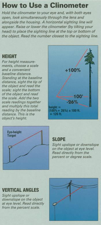 How to measure a tree? | Norfolk Woodlot Owners Assocation